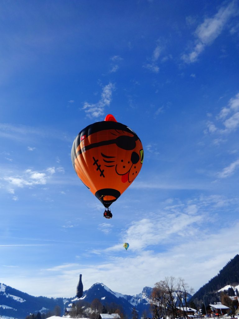 cat hot air balloon