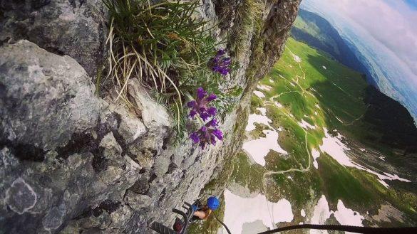 girl climbing on via ferrata Gantrisch